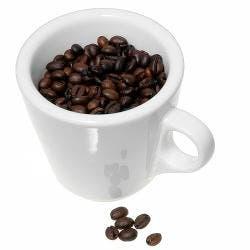 Gracias por los cafés: Diciembre 2008