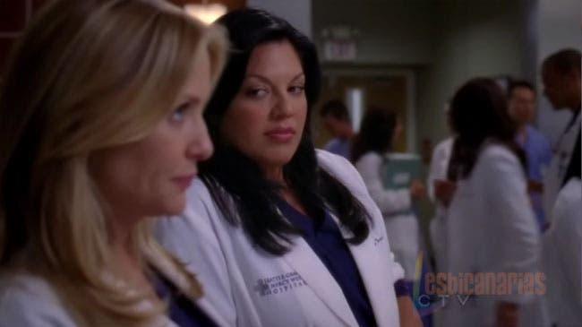 Callie y Arizona resumen de episodio 7×01