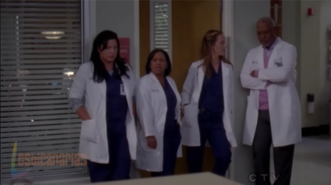 Callie y Arizona resumen de episodio 7×05