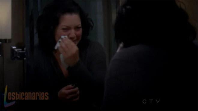 Callie y Arizona resumen de episodio 7×12
