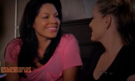 Callie y Arizona resumen de episodio 9×09