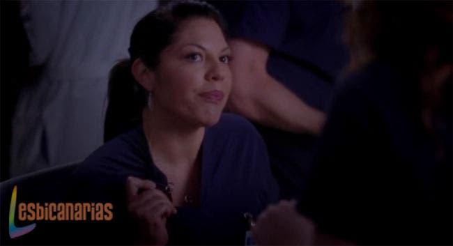 Callie y Arizona resumen de episodio 9x24 Anatomía de Grey ...