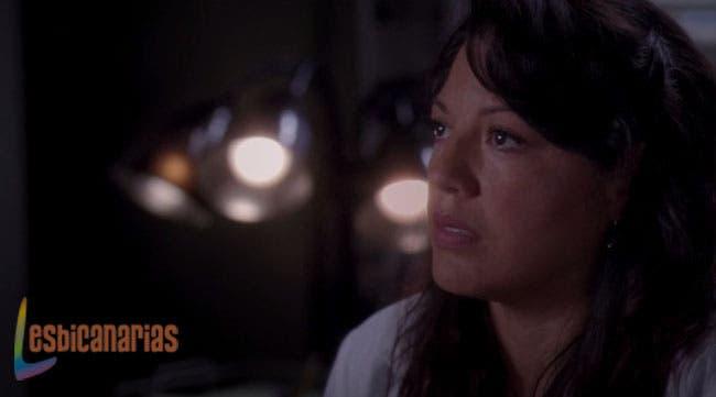Callie y Arizona: resumen de episodios 10×06