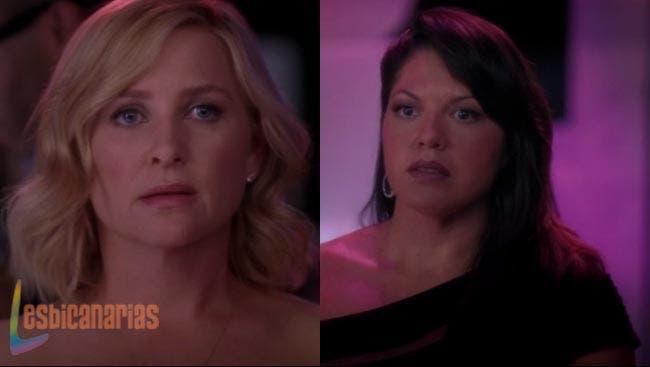Callie y Arizona: resumen de episodios 10×04