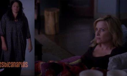 Callie y Arizona: resumen de episodio 10×10