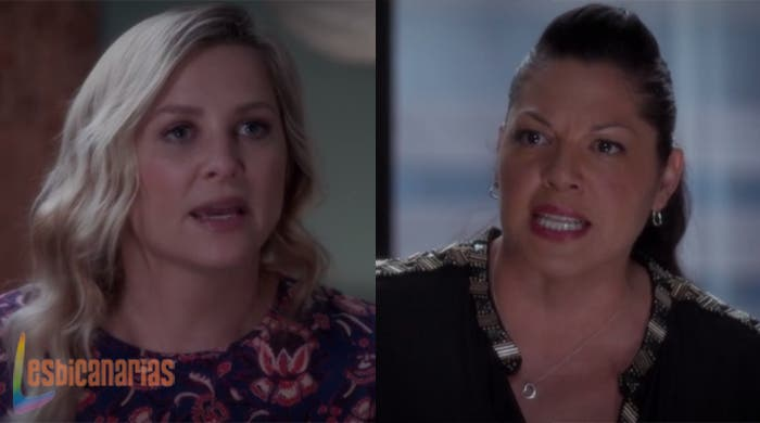 Callie y Arizona peleando