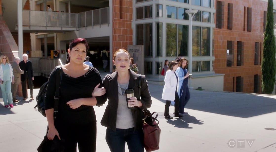 Callie y Penny caminando