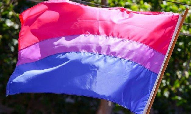 El caso de Halsey es un reflejo de la lucha bisexual
